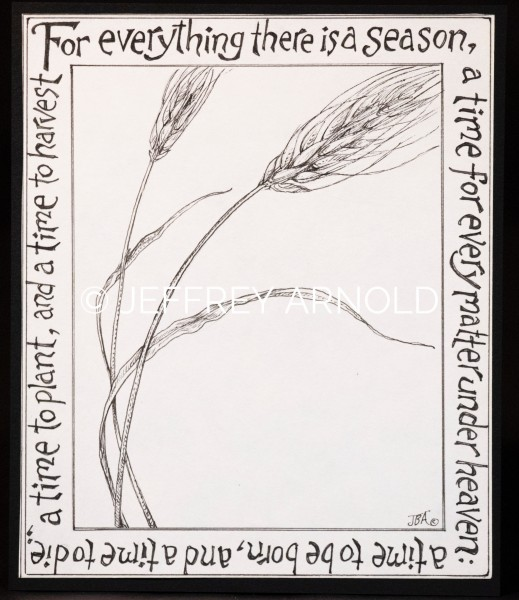 There is a Season   Pen and Ink Illustration